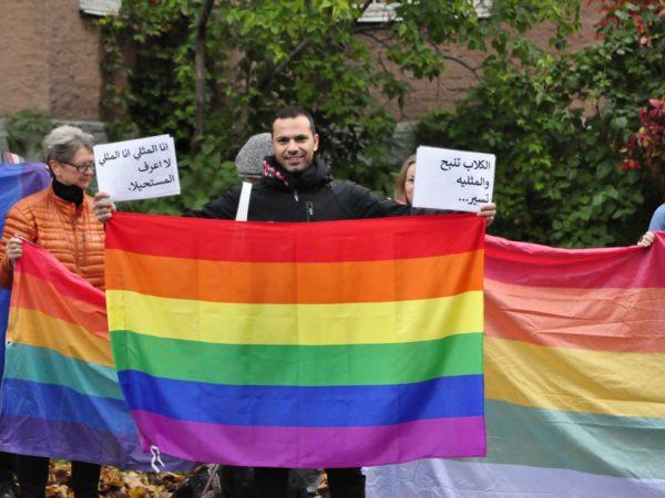 Ekstrem antihomolov i Egypt